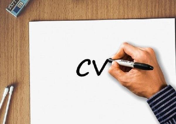 Cara Membuat CV Online Lamaran Kerja yang Menarik