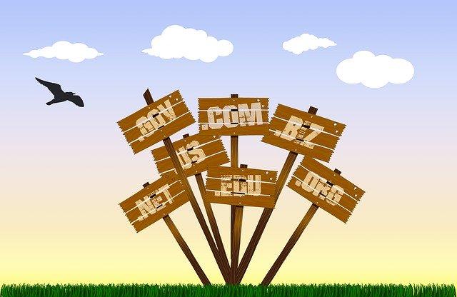 Mengenal Pengertian Domain dan Pentingnya untuk Membangun Bisnis Online