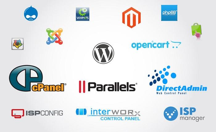 Mengenal Apa itu Softaculous dan Manfaatnya dalam Pembuatan Website